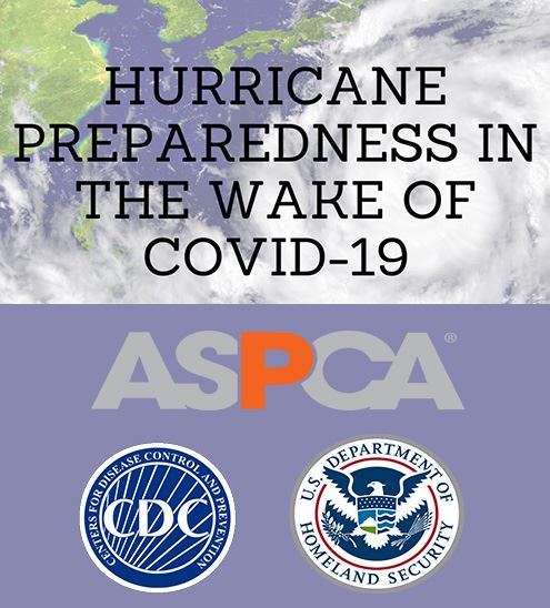 Hurricane preparedness and COVID news item